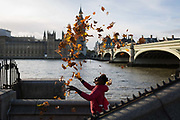 Man throws up autumn leaves opposite the Houses of Oarliament in Westminster, on 20th October 2017, in London, England.