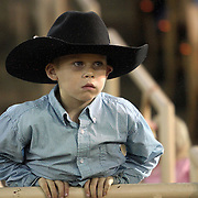 A young cowboy watches the action during the 129th performance of the PRCA Silver Spurs Rodeo at the Silver Spurs Arena   on Friday, June 1, 2012 in Kissimmee, Florida. (AP Photo/Alex Menendez) Silver Spurs rodeo action in Kissimee, Florida. PRCA rodeo event in Florida. The 129th annual running of the cowboy event.