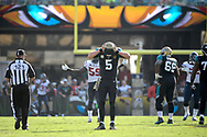 Jacksonville Jaguars quarterback Blake Bortles (5) reacts after throwing an incomplete pass to an open receiver during the second half of an NFL football game against the Houston Texans in Jacksonville, Fla., Sunday, Nov. 13, 2016. The Texans won 24-21. (AP Photo/Phelan M. Ebenhack)