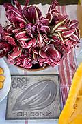 OREGON x ITALY Showcase: Ayers Creek cayenne, Arch Cape chicory<br /> Seed Growers: Anthony & Carol Boutard, Ayers Creek Farm Farmer: Myrtha Zierock, Azienda Agricola Foradori Chefs: Sarah Minnick, Lovely's Fifty-Fifty and Linda Colwell, Ayers Creek Farm