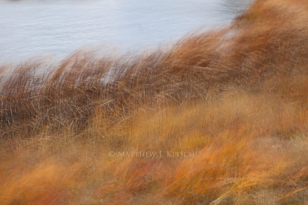 This is another image that was created during wind gusts up to 50mph in fall. This type of wind is typical in Wisconsin during fall. I was trying to capture wind. I believe I succeeded.