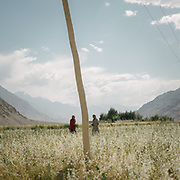 Field work. The traditional life of the Wakhi people, in the Wakhan corridor, amongst the Pamir mountains.