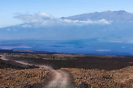 Narrow gravel road through a lava field, Hilo, Hawaii.