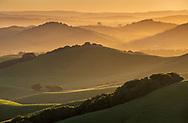 Sunrise over rolling green hills in spring near Petaluma, Sonoma County, California