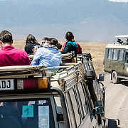 Two different types of open-top safari, one of which provides shade while the other doesn't, at Ngorongoro Crater in the Ngorongoro Conservation Area, part of Tanzania's northern circuit of national parks and nature preserves.
