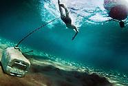 Open Water portfolio
