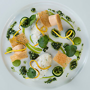 The Pompadour Restaurant in Edinburgh. Tartare of Orkney Scallop, Brown Crab Pannacotta, Courgette, Watercress and Whelk Vinaigrette. Picture Robert Perry for The Observer 14th Aug 2014