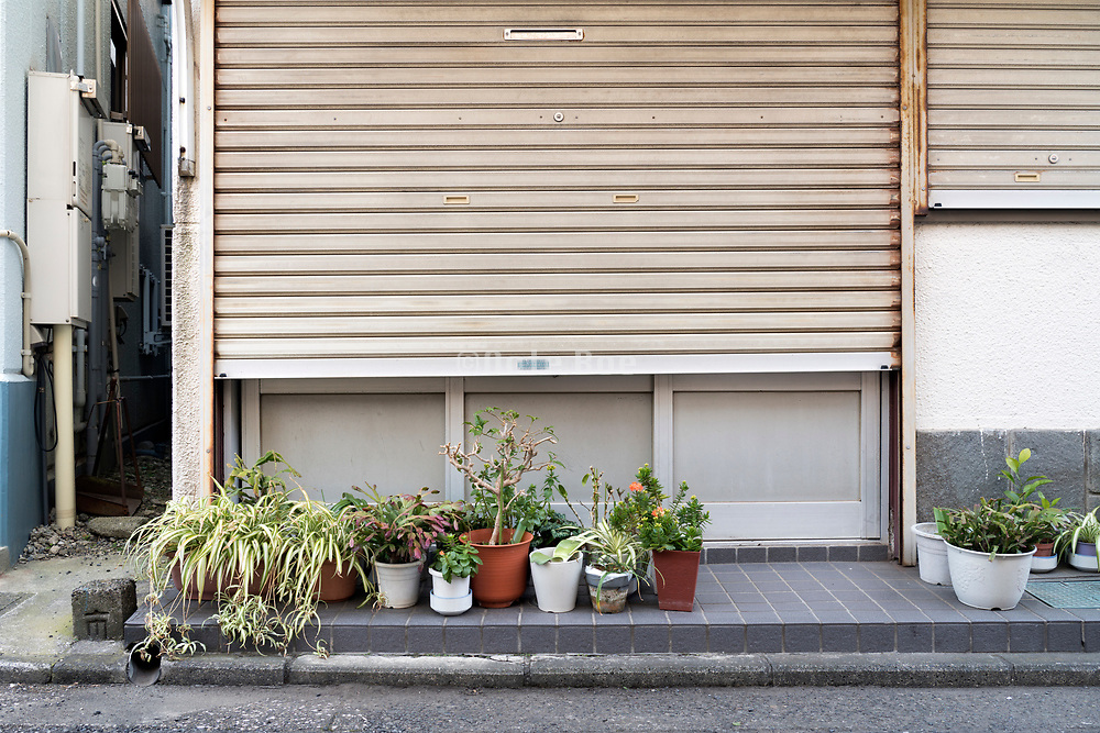 potted plants in front of the house Yokosuka Japan