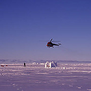 Antarctica, Helicopter shuttles tourists to Atka Bay and Emperor Penguin rookery.