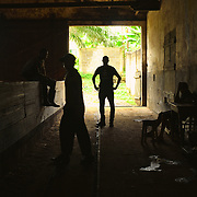 Workers handling the dried cocoa at Agua Izé, one of the few still working roças of São Tomé.