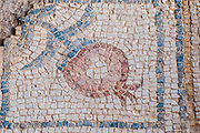 Pomegranate fruit mosaic floor design in the Nile House at Zippori National Park The city of Zippori (Sepphoris) A Roman Byzantine period city with an abundance of mosaics, Lower Galilee, Israel