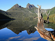 Cradle Mountain reflects in Dove Lake, in Cradle Mountain - Lake Saint Clair National Park, Tasmania, Australia. The Tasmanian Wilderness was honored as a UNESCO World Heritage Site in 1982, expanded in 1989. The most extensive dolerite formations in the world dominate the landscape of Tasmania, where magma intruded into a thin veneer of Permian and Triassic rocks over perhaps a million years during the Jurassic breakup of supercontinent Gondwana in the Southern Hemisphere, forming vast dolerite/diabase sills and dike swarms. (North American geologists use the term diabase instead of dolerite to refer to the fresh, unaltered rock.)