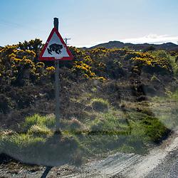 Estrada (Rodovia) fotografado na Escócia, na Europa. Registro feito em 2019.<br /> ⠀<br /> ⠀<br /> <br /> <br /> <br /> <br /> <br /> <br /> ENGLISH: Road photographed in Scotland, in Europe. Picture made in 2019.