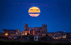 Review of the Year 2017: December: The Supermoon rises above Whitby Abbey in Yorkshire.