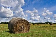 Kansas countryside.
