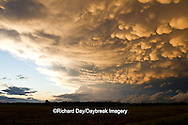63891-02416 Mammatus clouds after storm,  Marion Co. IL