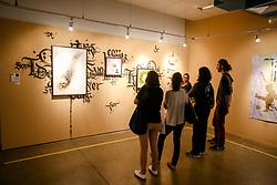 July 21, 2017 - A Usina 14 é um grupo heterogêneo de 14 artistas, além dos convidados, que busca compreender a arte e seu entorno, voltado à investigação, discussão e difusão, vivências e interações relacionais no campo das artes visuais, pensando e refletindo sobre os processos de produção, circulação e recepção da visualidade contemporânea. (Credit Image: © Luis Lima Jr/Fotoarena via ZUMA Press)