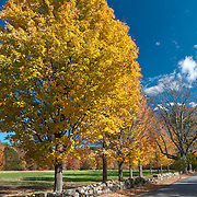 Baker Bridge Road in Concord, MA is bordered by protected farmland, a rarity in this upscale, Boston suburb.