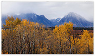 Cloud shrouded peaks in autumn following a stormy morning at Grand Teton National Park, Wyoming, USA
