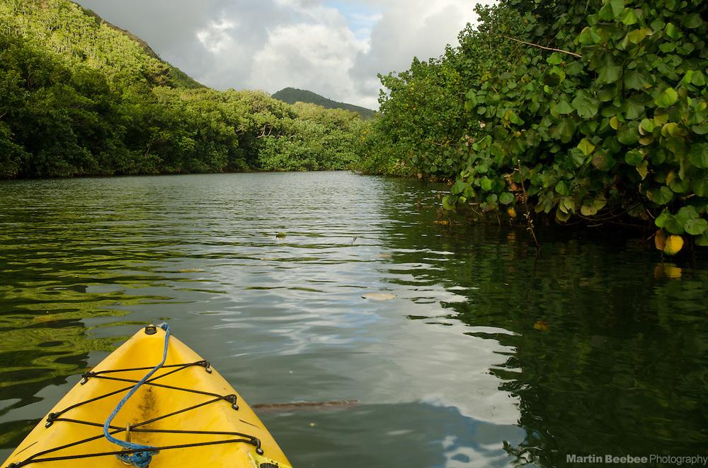 Kayaking the Wailua River, Kauai, Hawaii