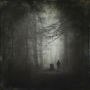 Man on forest path on a misty morning - manipulated photograph in black and white, edited with texture overlays