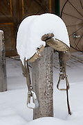 Vertical of snow-covered saddle on post