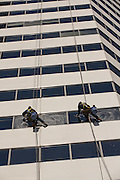 Window washers clean a building along South Michigan Ave in Chicago, IL.