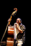 """Bass player Ken Filiano during a """"Lou Grassi's avanti Galopi""""performance.""""Jazz ao Centro"""" jazz festival is held twice a year in portuguese town of Coimbra."""