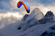 Paragliders in the Swiss Alps near the Schreckhorn  mountain above the Grindelwald valley - Swiss Alps - Switzerland .<br /> <br /> Visit our SWITZERLAND  & ALPS PHOTO COLLECTIONS for more  photos  to browse of  download or buy as prints https://funkystock.photoshelter.com/gallery-collection/Pictures-Images-of-Switzerland-Photos-of-Swiss-Alps-Landmark-Sites/C0000DPgRJMSrQ3U