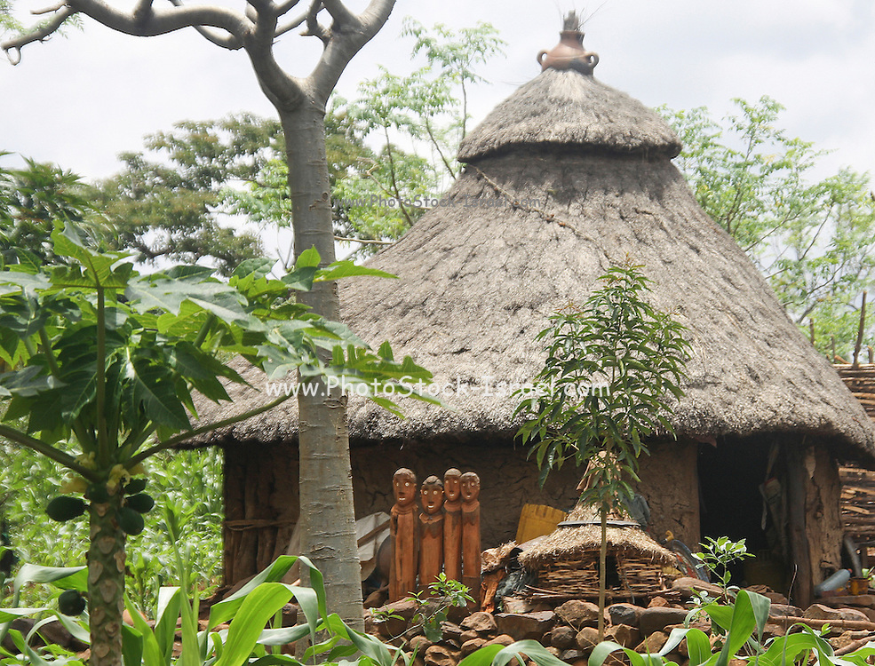 Africa, Ethiopia, Konso tribe, Mecheke village, Thatched roof huts