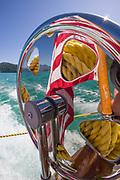 Shoreleave ll, August, Broughton Islands Archipelago, Salish Sea, British Columbia, Canada