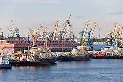 Cranes at Harbor, Saint Petersburg, St Petersburg, Russia