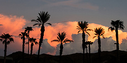 Palm trees and mountains silhouetted at sunset with pink clouds.