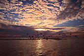 Landscapes of SW Florida