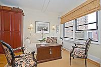 NYC Living Room Interior