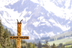 THEMENBILD - ein Gamskopf und der Schriftzug Wildpark Ferleiten aus Holz im Wildpark Ferleiten, aufgenommen am 29. April 2018 in Taxenbacher-Fusch, Österreich // a chamois Head and the logotype Wildpark Ferleiten made of wood at the Wildlife Park, Taxenbacher-Fusch, Austria on 2018/04/29. EXPA Pictures © 2018, PhotoCredit: EXPA/ JFK