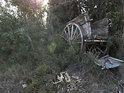 Old fashioned wooden cart sits falling apart in the countryside near Lagrasse, France. In a scene which looks almost like it could have been painted by an impressionist.