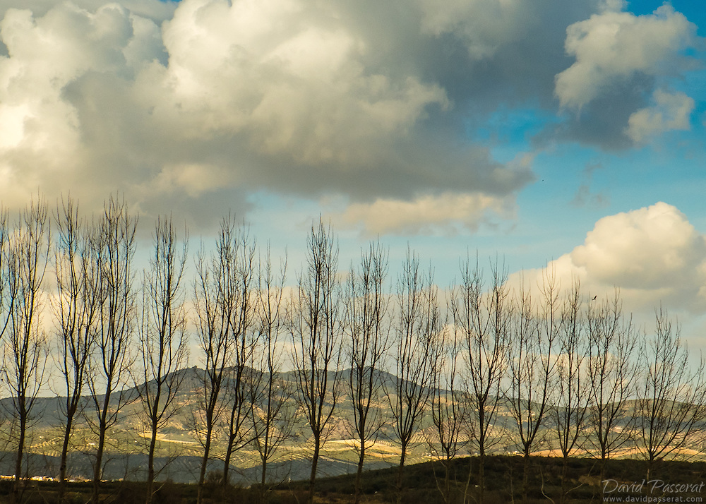 Picture taken from the bus on the road between Malaga and Granada.