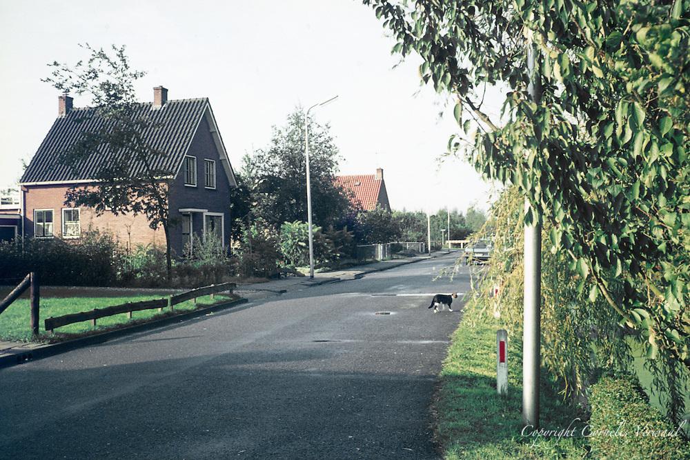 De Achterweg in Ammerstol anno 1977.