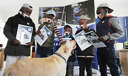 """South Africa - Cape Town - 16 September 2020 - Cape Town - The dog named Champ gets reunited with his saviors. Five young boys from Philippi served as an example after they found a dog distressed in the bushes and walked for miles to take it to a safe place. The boys found the nearest Animal Welfare Society of SA outlet and took the Labrador, which they named Champ, to its premises. The Animal Welfare said in a Facebook post: """"They looked as though they had just crossed the finish line of a marathon and won first prize as they excitedly took turns proudly explaining that they had found the dog lying in the bushes. The kids went into great detail about the ingenious plan they hatched to help rescue him."""" Jacaranda FM's Breakfast presenter Martin Bester spoke to Jacques le Roux, the nurse who assisted the boys with the dog at Animal Welfare and gave the young boys R1000 each towards their education. Photographer: Armand Hough/African News Agency(ANA)"""