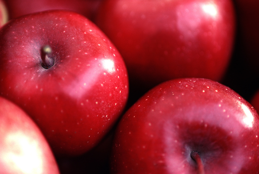Close up selective focus photograph of a pile of Red Delicious apples