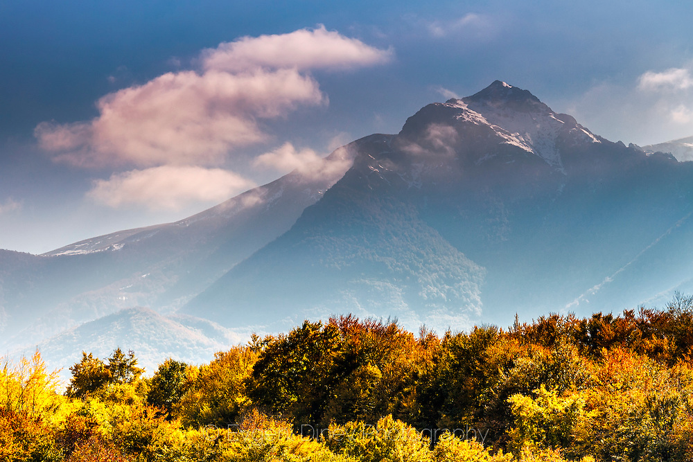 Snowy peak and an autumn forest