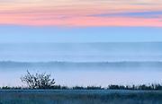 DAwn light and fog over the prairie landscape<br /> Trochu<br /> Alberta<br /> Canada