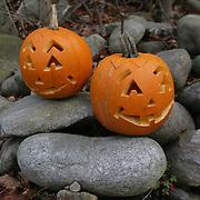 Trollhättan 20101025 <br /> Halloween pumpa<br /> pumpor på stenar<br /> <br /> <br /> FOTO : JOACHIM NYWALL KOD 0708840825_1<br /> COPYRIGHT JOACHIM NYWALL<br /> <br /> ***BETALBILD***<br /> Redovisas till <br /> NYWALL MEDIA AB<br /> Strandgatan 30<br /> 461 31 Trollhättan<br /> Prislista enl BLF , om inget annat avtalas.