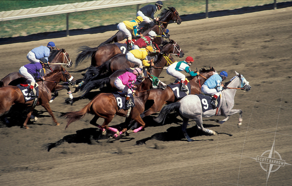 The Meadowlands Race Track