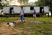Solange and Francisco Da Silva Correia's grandchildren leave their grandparents' riverside home for school near the town of Caviana, Amazonas, Brazil.  (Solange Da Silva Correia is featured in the book What I Eat: Around the World in 80 Diets.)   They  use one of the family's outboard canoes to get to school in the nearby town of Caviana in Amazonia, Brazil, 20 minutes downriver.