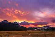 Sunset over Tuolumne Meadows, Yosemite National Park, California USA