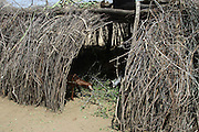 Africa, Ethiopia, Omo Valley, Karo tribe hut