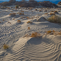 Ripples paint the surface of sand dunes in Death Valley National Park, California.