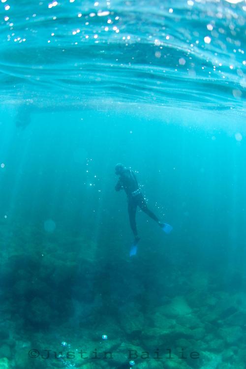 Sea of Cortez, Mexico